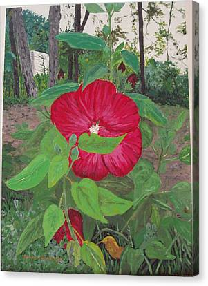 Hibiscus Canvas Print by Sharon  De Vore