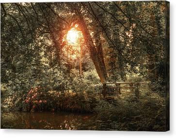 Hidden Canvas Print - Hidden Beauty by Wim Lanclus