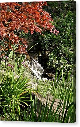 Canvas Print featuring the photograph Hidden Cascade by Michele Myers