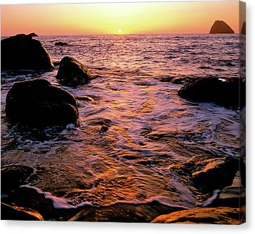 Hidden Cove Sunset Redwood National Park Canvas Print by Ed  Riche