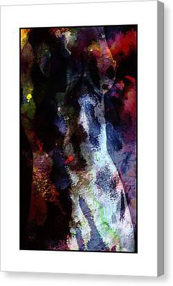 Hidden Curves Canvas Print by Steve K