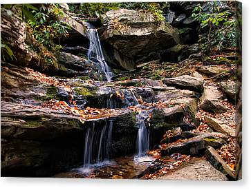 Hidden Falls Canvas Print - Hidden Falls 4 by Chris Flees