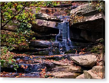 Hidden Falls Canvas Print - Hidden Falls 5 by Chris Flees