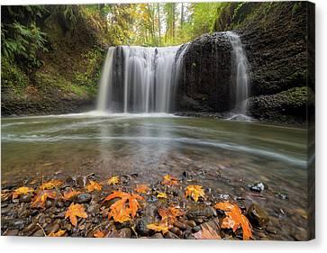 Canvas Print - Hidden Falls In Clackamas Oregon by David Gn