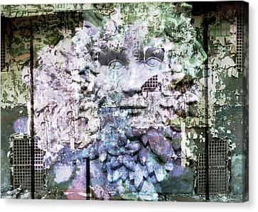 Hidden Canvas Print by Janet Duffey
