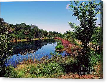 Canvas Print featuring the photograph Hidden Lake by Gary Wonning