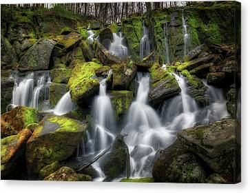 Hidden Mossy Falls Canvas Print by Bill Wakeley