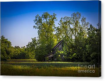 Hidden Treasures Canvas Print by Marvin Spates