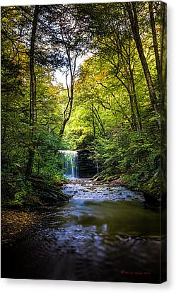Canvas Print featuring the photograph Hidden Wonders by Marvin Spates