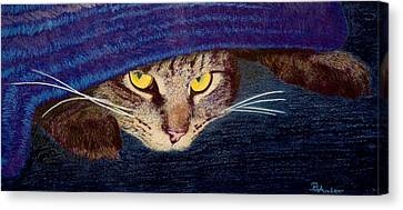 Hide And Seek Canvas Print by Brent Ander