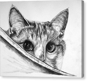 Hide N Seek Canvas Print by Susan A Becker