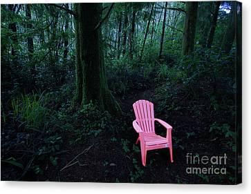 Hiding Place Canvas Print by Masako Metz
