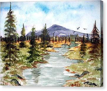 High Country Stream Canvas Print by Carol Grimes
