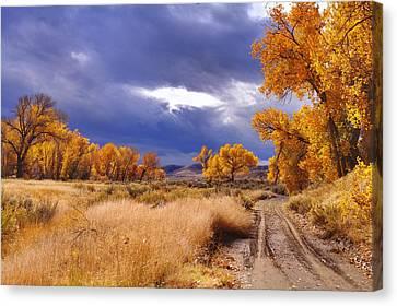 High Desert Autumn II Canvas Print by SB Sullivan