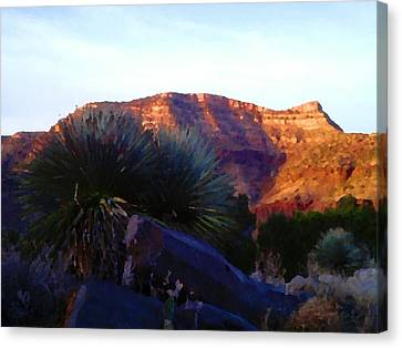 High Desert Colors Canvas Print