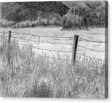 High Desert Hay Field Canvas Print by David King