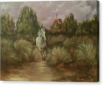 High Desert Runner Canvas Print