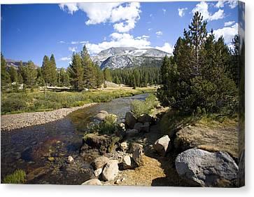 High Sierras Stream Canvas Print