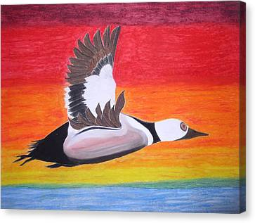 High Sped Duck Canvas Print by James Brown