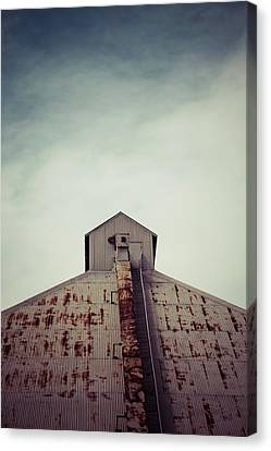 Canvas Print featuring the photograph High View by Trish Mistric