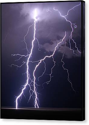 High Voltage! Canvas Print by Pat Gaines