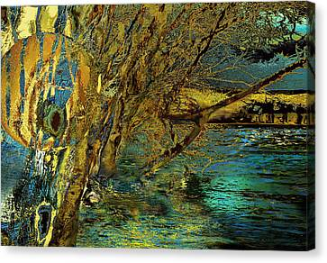 High Water In The Meadows Canvas Print by Anne Weirich