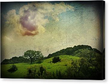 Higher Love Canvas Print by Laurie Search