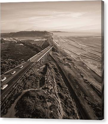 Torrey Pines Canvas Print - Higher Road by Doug Barr