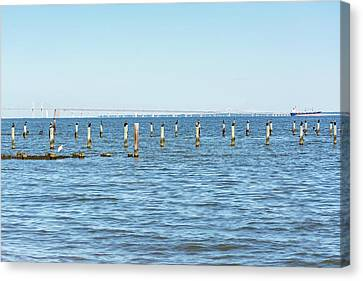 Canvas Print featuring the photograph Highland Beach On The Chesapeake by Charles Kraus