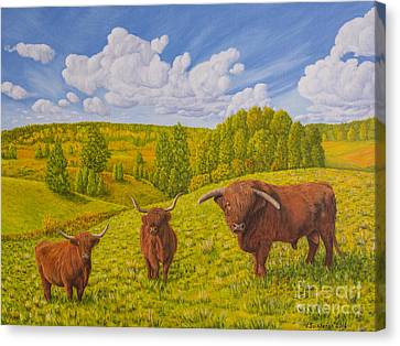 Highland Cattle Pasture Canvas Print by Veikko Suikkanen