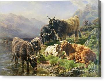 Williams River Canvas Print - Highland Cattle by William Watson