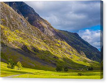 Highland Hillside Canvas Print by Steven Ainsworth