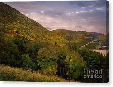 Highland Road Canvas Print