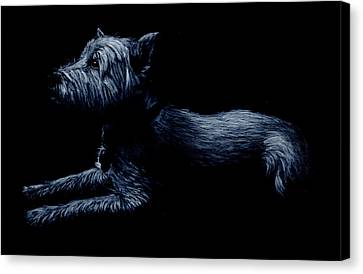 Highland Terrier Canvas Print