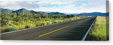 Highway 1 Baja Trans-peninsula Highway Canvas Print by Panoramic Images