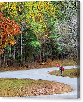 Hiker In The Woods Canvas Print