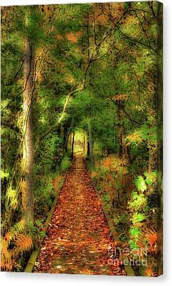 Canvas Print featuring the digital art Hiking In Paradise - West Virginia Ap by Dan Carmichael