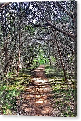 Hiking Meridian State Park  Canvas Print