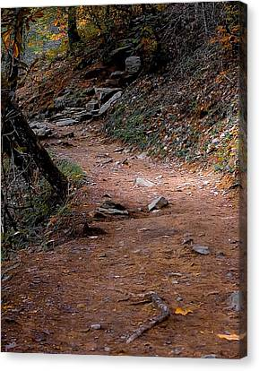 Hiking Trail To Abrams Falls Canvas Print by DigiArt Diaries by Vicky B Fuller