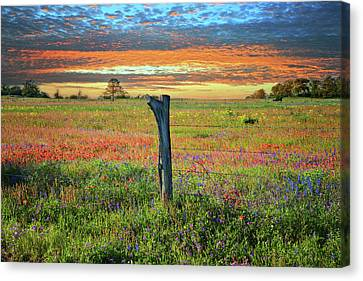 Hill Country Heaven Canvas Print
