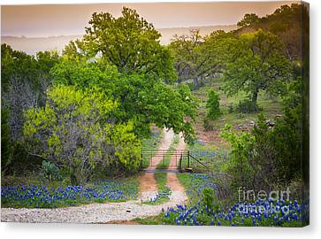 Hill Country Twilight Canvas Print by Inge Johnsson