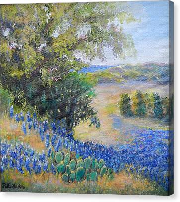 Hill Country View Canvas Print