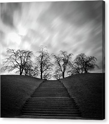 Hill, Stairs And Trees Canvas Print by Peter Levi