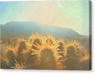 Canvas Print featuring the photograph Hill Top Sunset  by Mark Ross