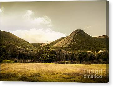 Hills And Fields Of Trial Harbour Canvas Print