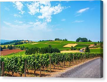Hills Of Vineyards Canvas Print
