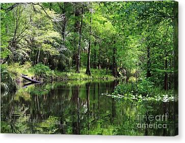 Hillsborough River Vista Canvas Print