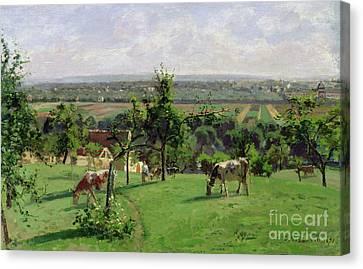 Cow Canvas Print - Hillside Of Vesinet by Camille Pissarro