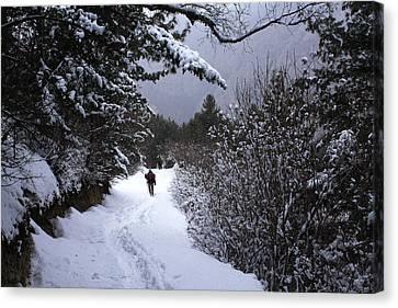 Himalayan Trail Canvas Print