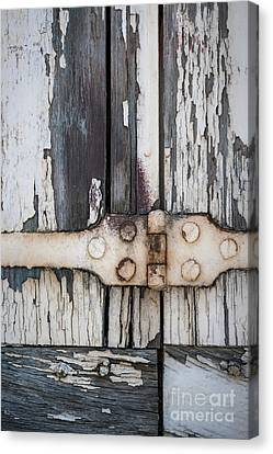 Hinge On Old Shutters Canvas Print